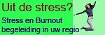 Logo Burnoutbegeleidingin